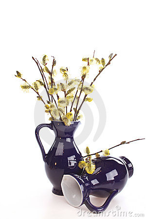 Osier in a vase