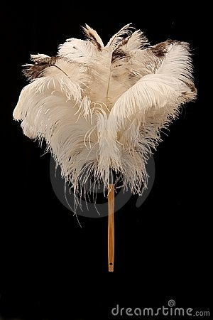 Free Ostrich Feather Duster Royalty Free Stock Photos - 10488838