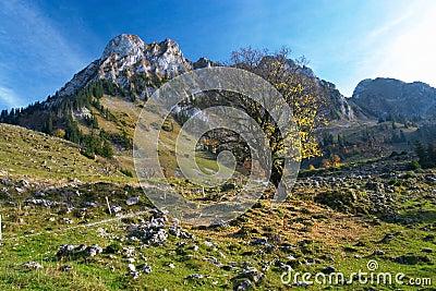 Otoño en las montañas del Jura