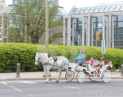 Ottawa Tulip Festival 2012 - Horse & Carriage 2 Editorial Photography