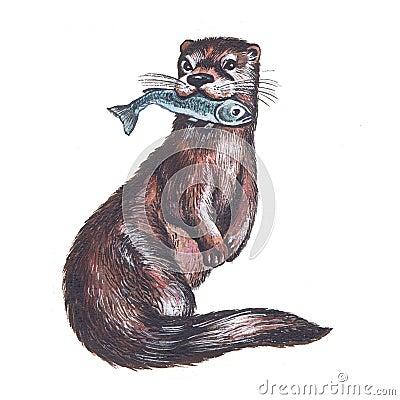 otter royalty free stock image image 16682416