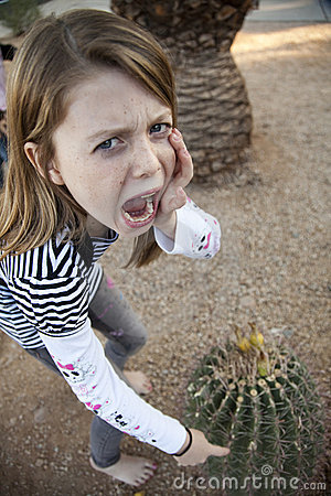 ouch dont touch the cactus stock photography image