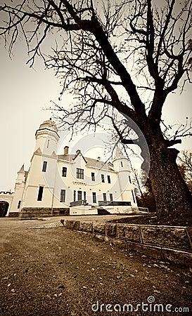 Oude kasteelfoto