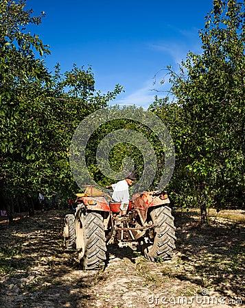 Oude mens die in omgekeerde zijn tractor drijft