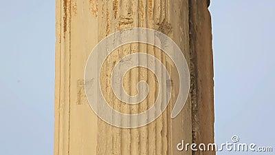 Oude pilaster, Corinthische die kapitalen met afgietsel, de Poort van Hadrian worden verfraaid stock footage