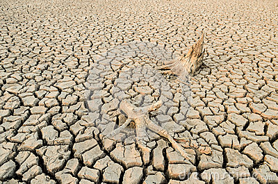 an introduction to the problem of water shortage Introduction water is a global issue, and the major critical issues affecting its  access today are management and pollution.