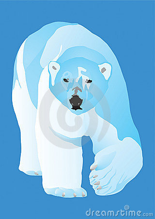 Ours blanc un prédateur dangereux