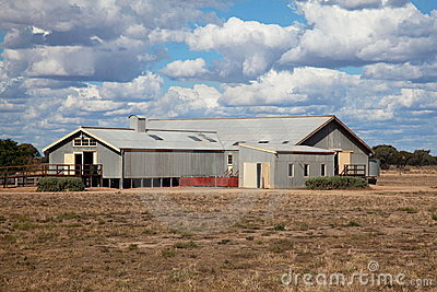 ... scene in of an outback Australian sheep shearing shed, Queensland