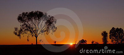 Outback sunrise in Australia