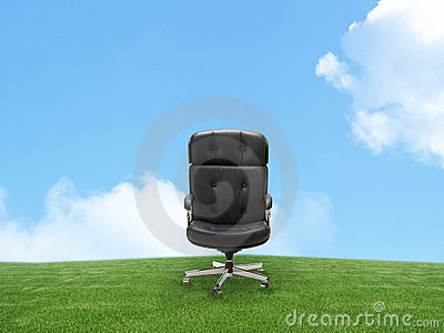 Outdoor armchair on green land