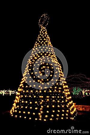 Outdoor Christmas Tree Lights Stock graphy Image