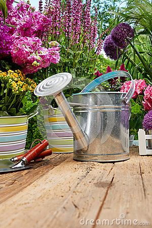 Free Outdoor Gardening Tools On Old Wood Table Royalty Free Stock Photos - 66098938