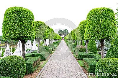 Outdoor landscape garden