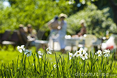 Outdoor Summer Party Royalty Free Stock Photography - Image: 9910767