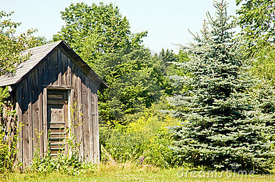 Outhouse on edge of woods