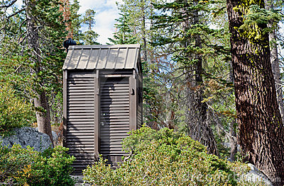 Outhouse toilet in forest