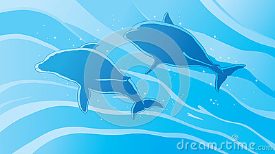 Outline dolphins