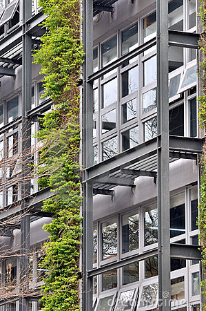 Outside frame of building and green plant