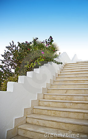 Outside stairway and flowers