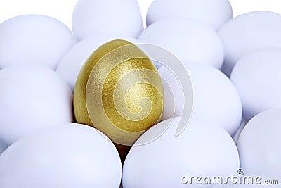 Outstanding golden egg