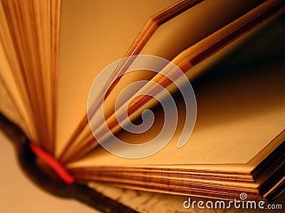 Ouvrez le livre de souvenir
