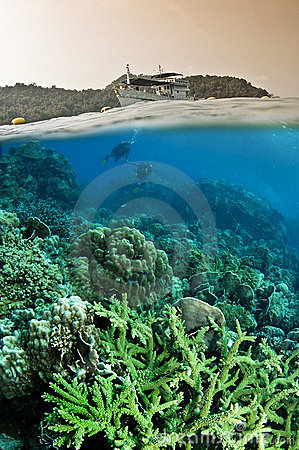 Free Over Under Of Ocean And Divers Stock Photo - 12070520