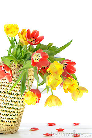 Free Overflowing Basket Of Flowers Royalty Free Stock Images - 8037019