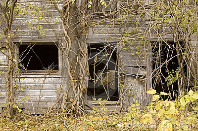 Overgrown Barn Front