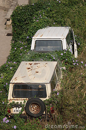 Free Overgrown Cars Royalty Free Stock Photography - 342407