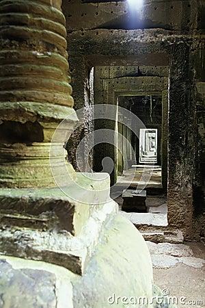 Overgrown Khmer ruin- Angkor Wat, Cambodia.