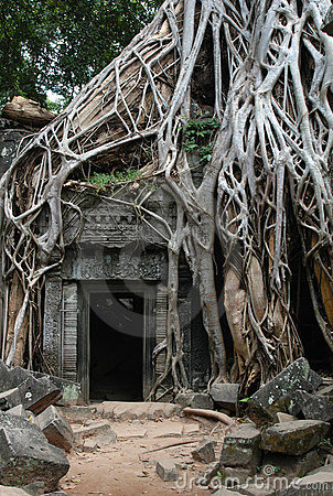 Free Overgrown Khmer Ruins Stock Photos - 827873