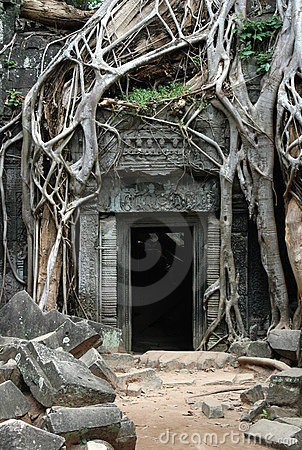 Free Overgrown Khmer Ruins Stock Photography - 907242