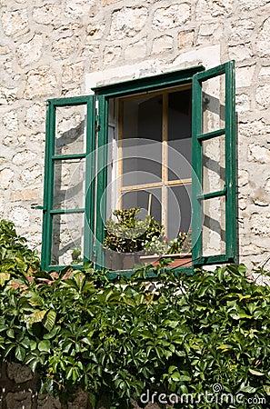 Free Overgrown Window Stock Photos - 16440463