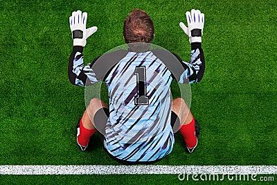 Overhead shot of a goalkeeper on the goal line