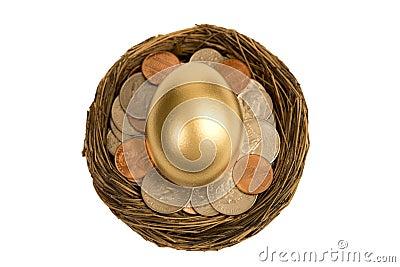 Overhead Shot Of Golden Egg In Nest