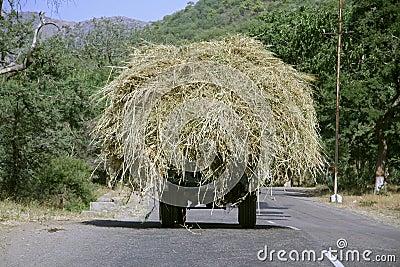 Overloaded truck, rajasthan