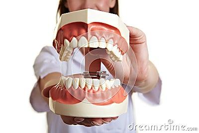 Oversized teeth model biting