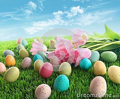 Ovos de Easter com os tulips cor-de-rosa na grama