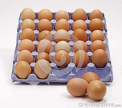 Ovos na bandeja foto de stock royalty free imagem 17261765 for Bandejas para huevos