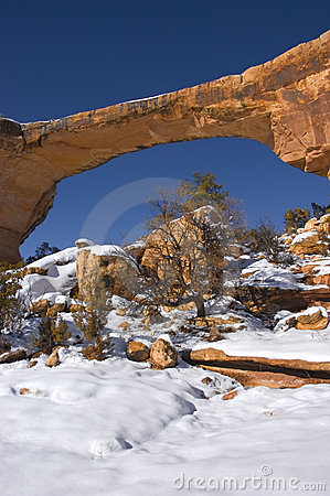 Owachomo at Natural Bridges National Monument