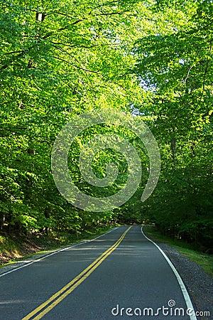 Owen creek road jest
