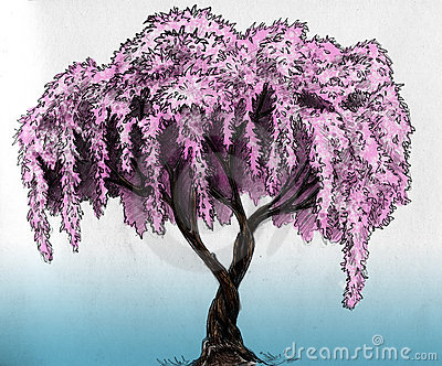 Ołówkowy Sakura nakreślenia drzewo