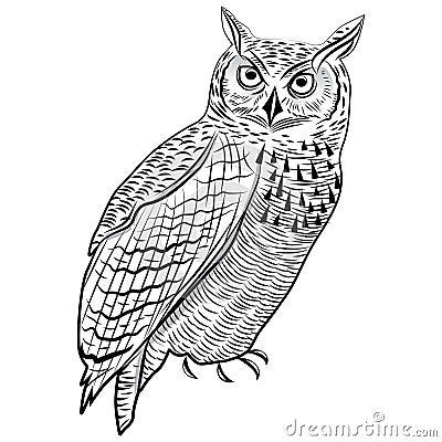 Free Owl Bird Head Symbol For Mascot Or Emblem Design, Logo Vector Illustration For T-shirt Tattoo Design. Royalty Free Stock Photos - 46706318