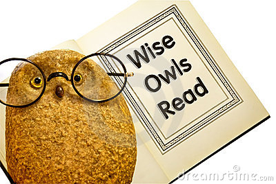Owl With Book / Wise Owls Read