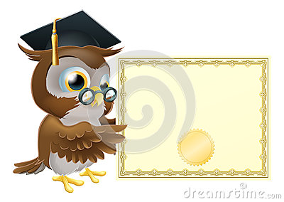 Owl diploma certificate background