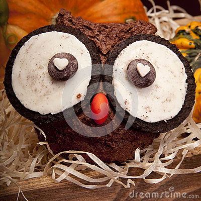 Free Owl Muffins Royalty Free Stock Images - 50279599
