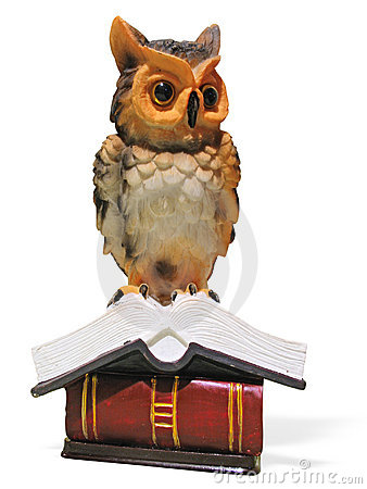 Owl on opened book isolated over white