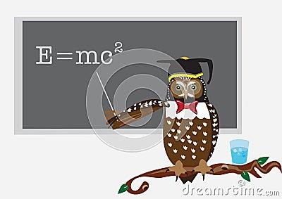 Owl s class
