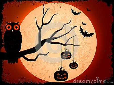Owl sitting on tree in Halloween Night