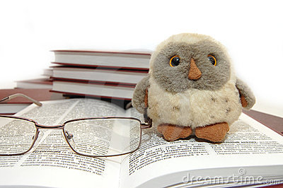 Owl a symbol of wisdom and knowledge